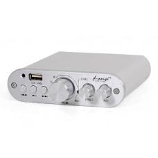 Dynavoice D-amp EX  garso stiprintuvas 100W grotuvas (Su USB įvestim)